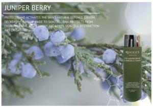 Juniper Berry - Rhodes Skincare